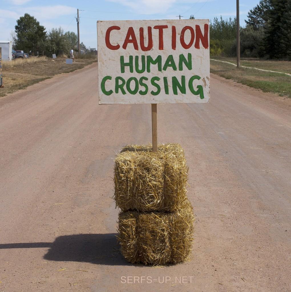 humano-crossing5