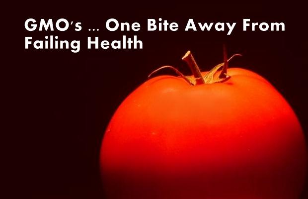 health_dangers_gmo2
