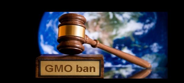 GMO-ban 2