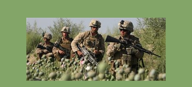 Afgan Narco State