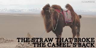 Camel straw