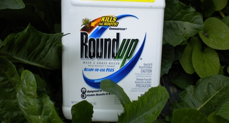 pesticides_roundup-466