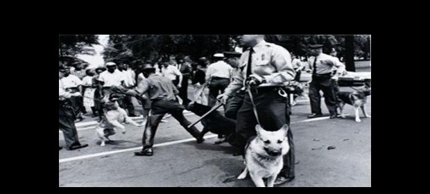 protes-blacks-police-dogs-60-620