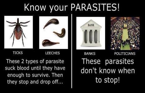 parasite-466