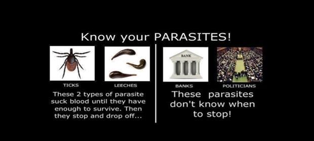 parasite-620