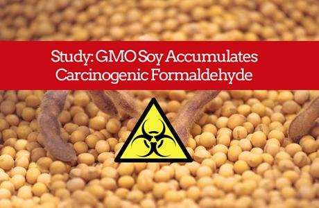 GMO-460