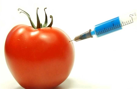 GMOsMIX-460