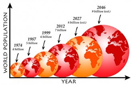 overpopulation-460