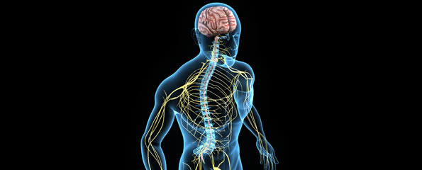 Sleep Disorders in Diseases of the Central Nervous System