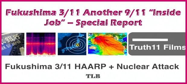 Fukushima-311