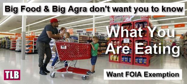 big-food 1