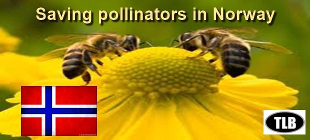 Norway pollinators meme 7 27 16