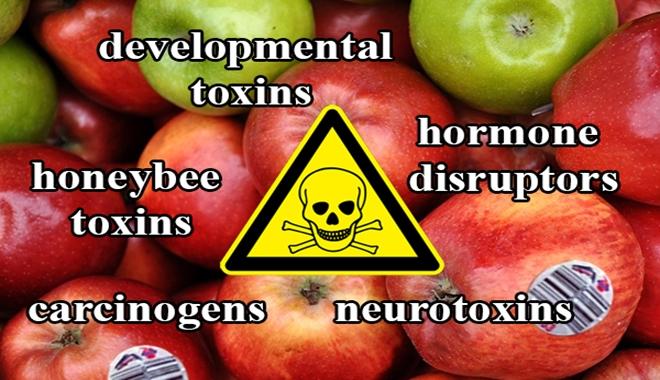 apples-47-pesticides-2