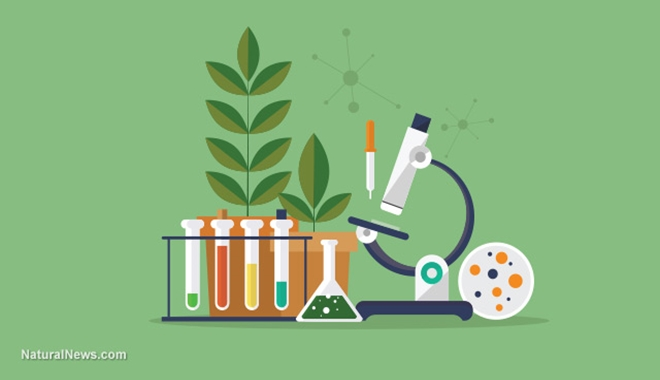 Biology-Lab-Science