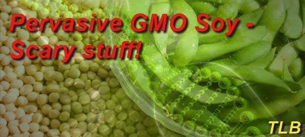 GMO soy meme 8 29 16