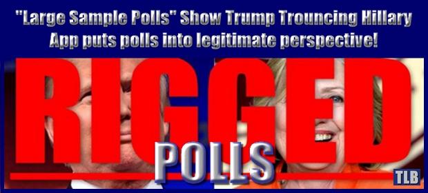 Rigged Polls