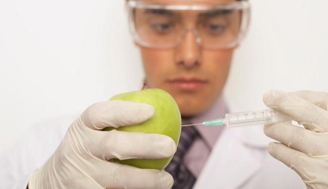 GMO news photo