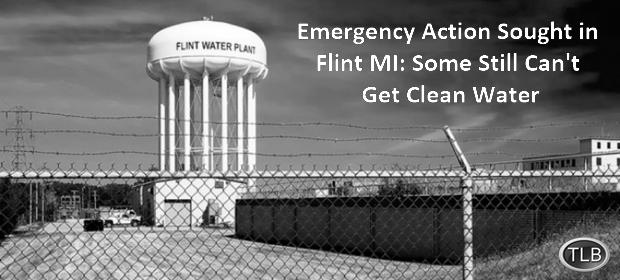 flint_water_plant-1