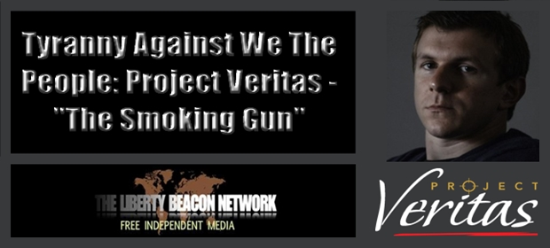Image result for project veritas gun control