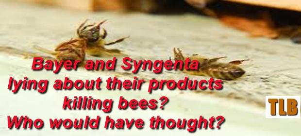 dead-bees-2-meme-10-15-16