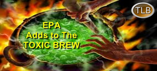 toxic-brew-feat-12-4-16