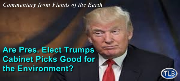 Is President Elect Donald Trump Good for the Environment ...
