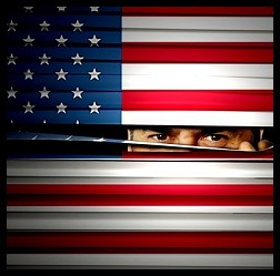 USSpying_USFlag_Blinds[1]
