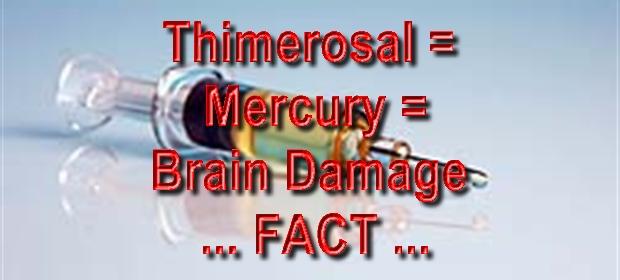 thimerosalvaccinecontroversy