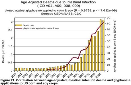 Glyphosate-versus-infection6