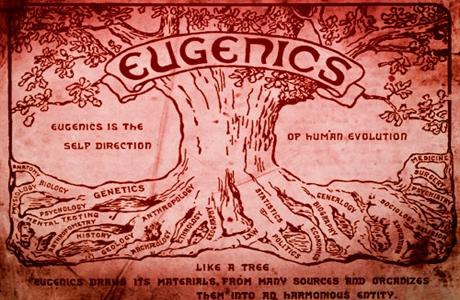 eugenics460