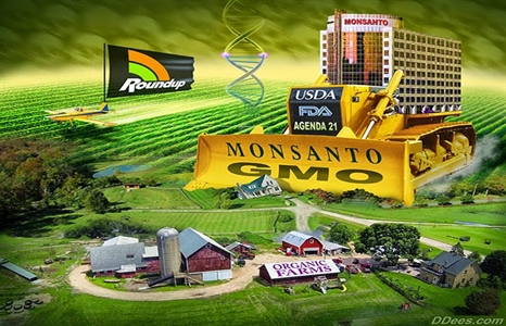 Monsanto-Roundup-Dees466