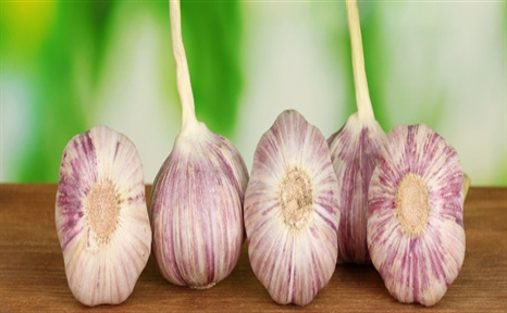 garlicbulbs466