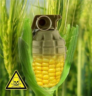 gmo-invisible-danger