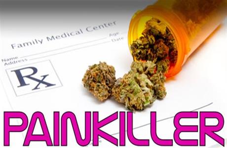 painkiller-cannabd-1460