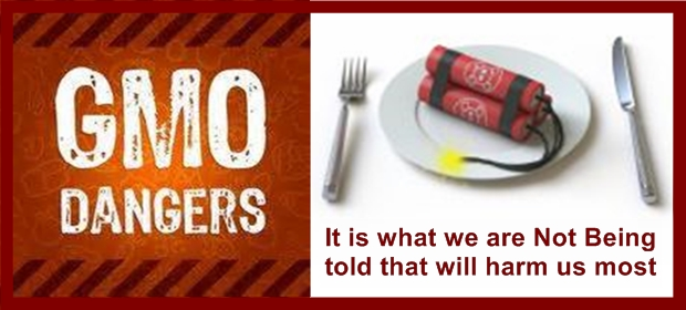 GMO Dangers 2