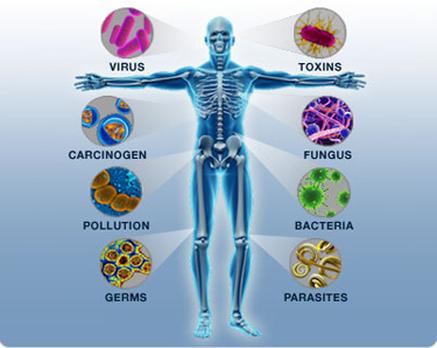 autoimmune-disease 1