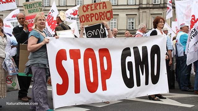 Protest-Sign-Stop-Gmo-March 4 15 16