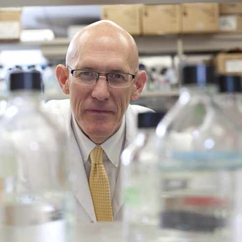 Dr.-Greg-Poland-working-in-vaccine-research-lab-1x1-square-1