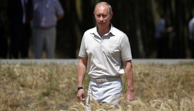 putin in wheat field