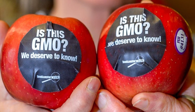 is_this_gmo_750