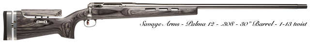 GUNS---SAVAGE ARMS-PALMA 12-PHOTO