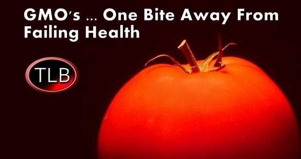 health_dangers_gmo